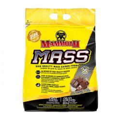 Mammoth Mass 15lb